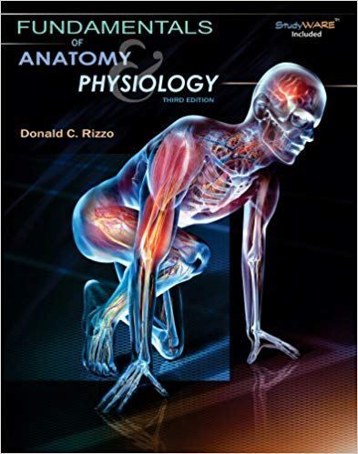 Fundamentals of Anatomy and Physiology 3rd Edition Rizzo Test Bank ...
