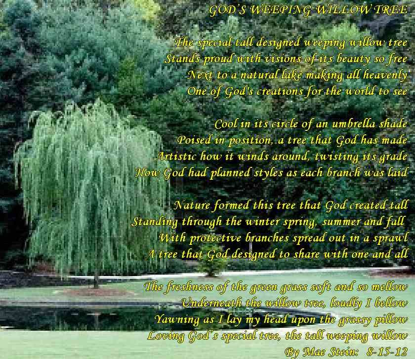 Image Result For Weeping Willow Tree Quotes Willow Tree