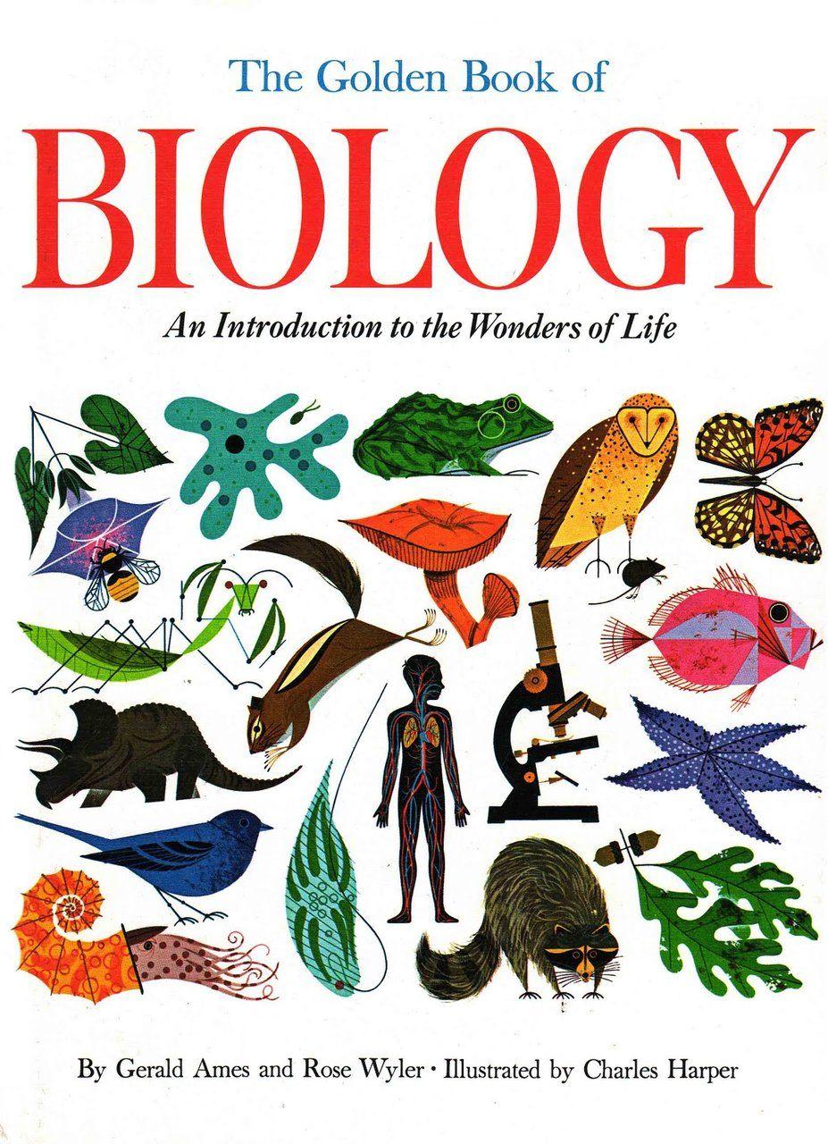 charley harper biology book   wish list   Pinterest   Ilustraciones ...