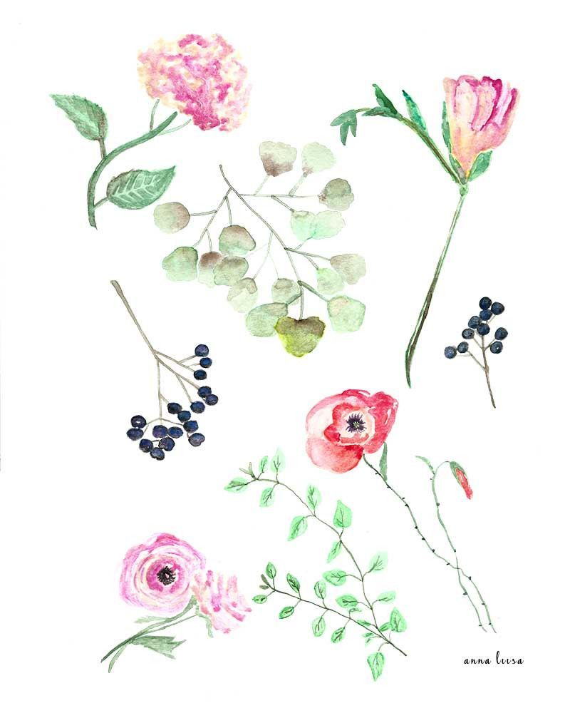 Retro Watercolor Botanical Chart