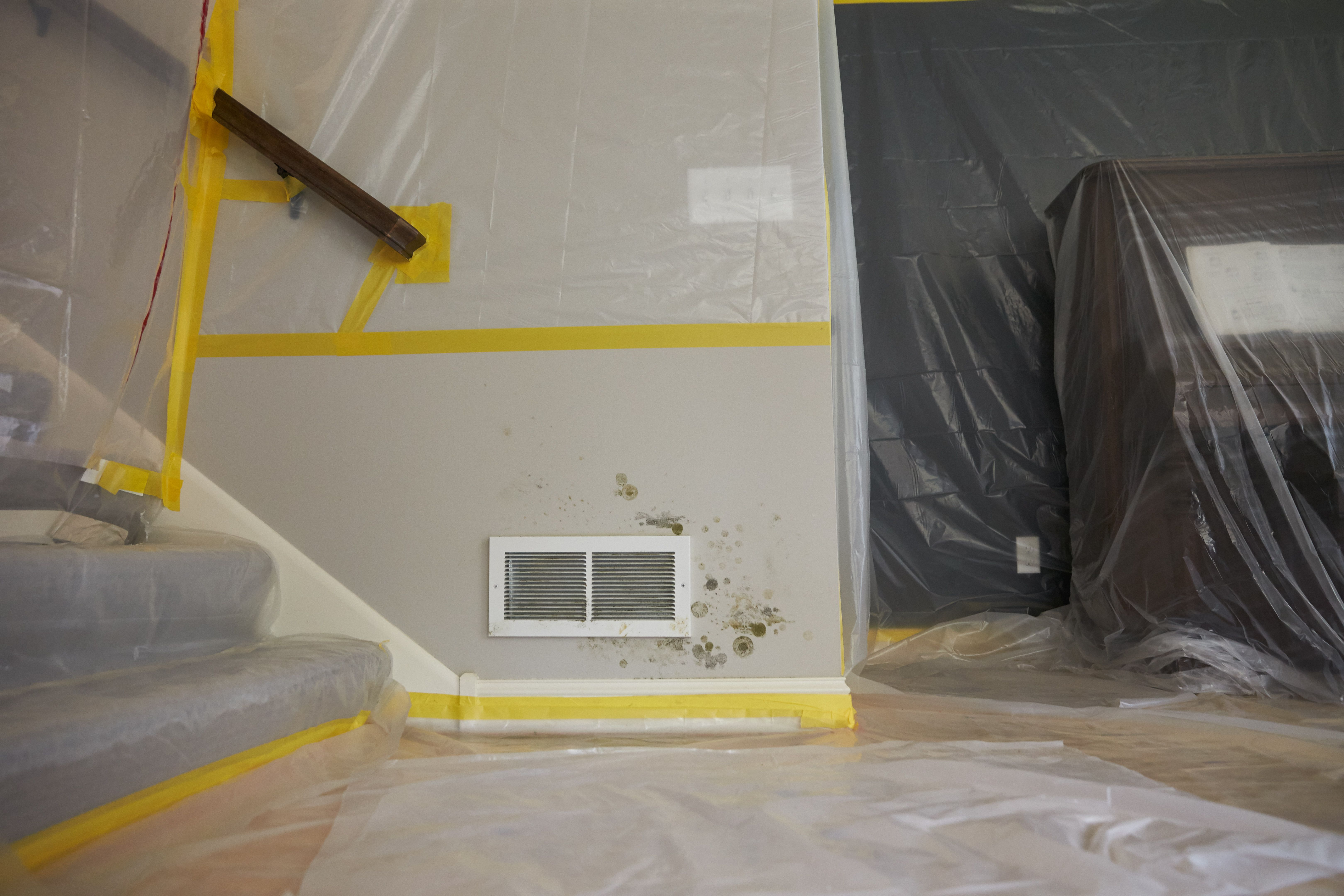 Mold Remediation In Sandy Springs Ga Mold Remediation Damage Restoration Diy Mould Removal