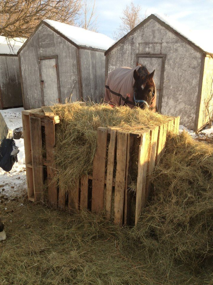 The pallet feeder I made for my horses. Easy, solid and free!