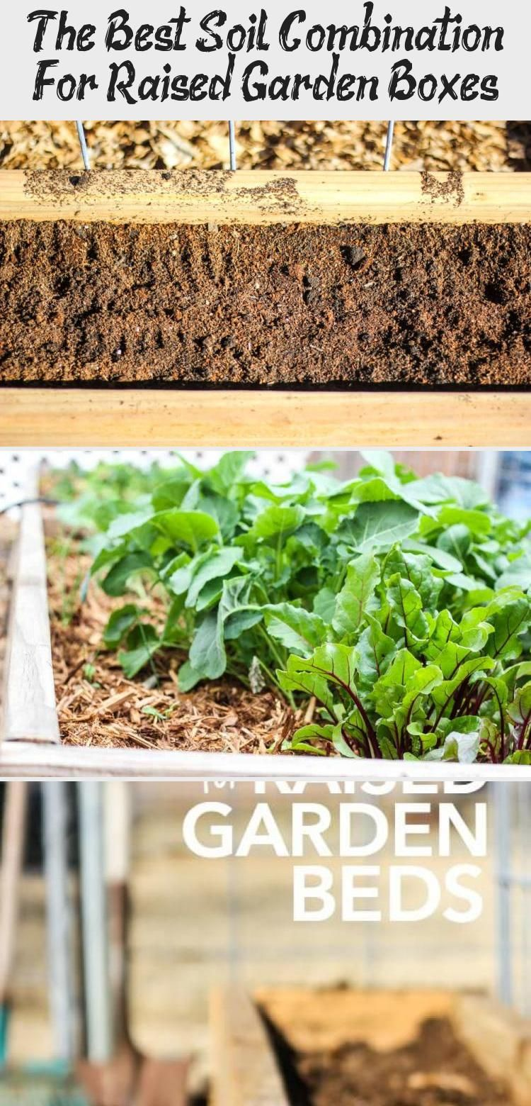 The Best Soil Combination For Raised Garden Boxes In 2020 Raised