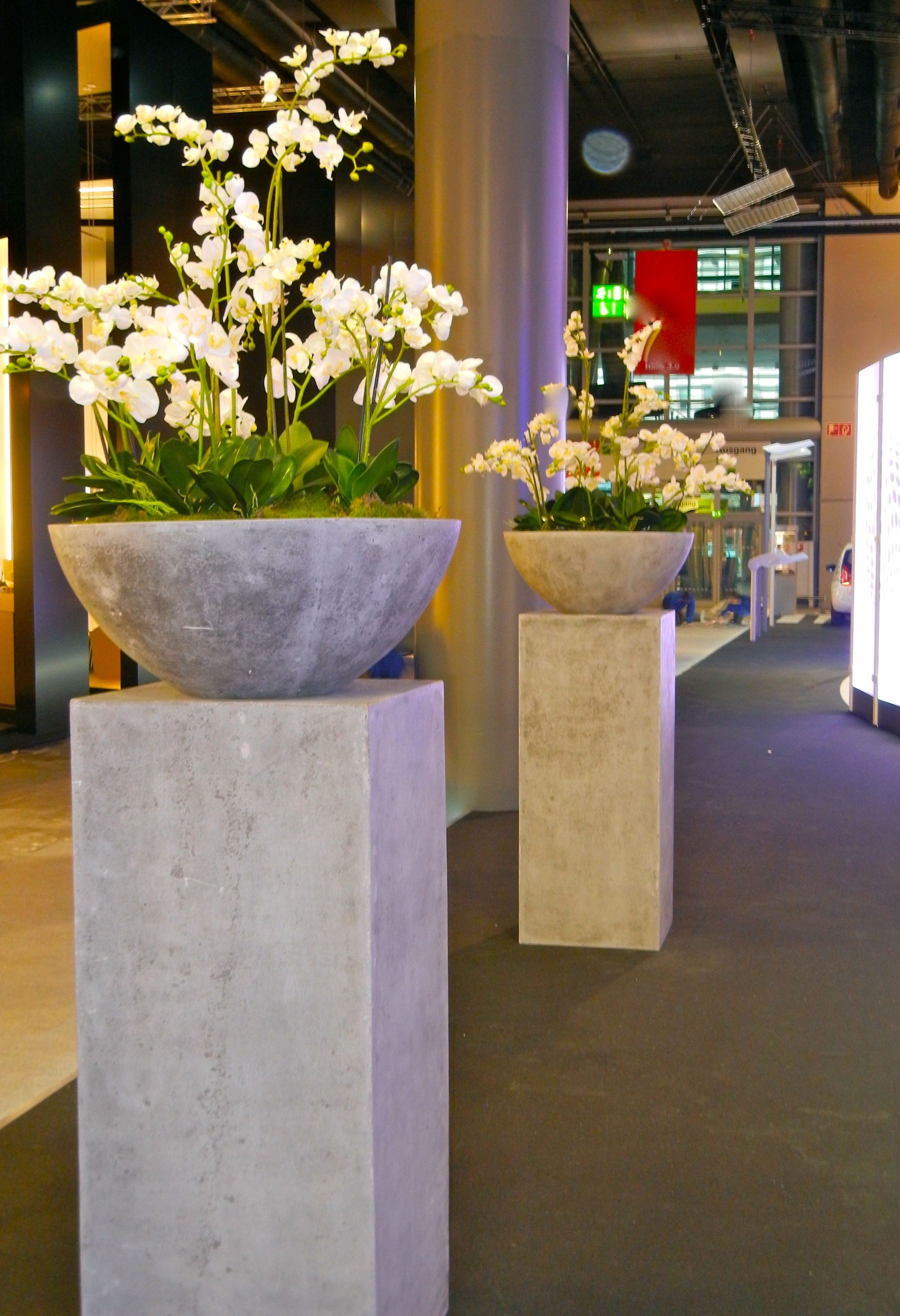 Kunstpflanzen Von Bella Planta Künstliche Orchideen Blühpflanzen