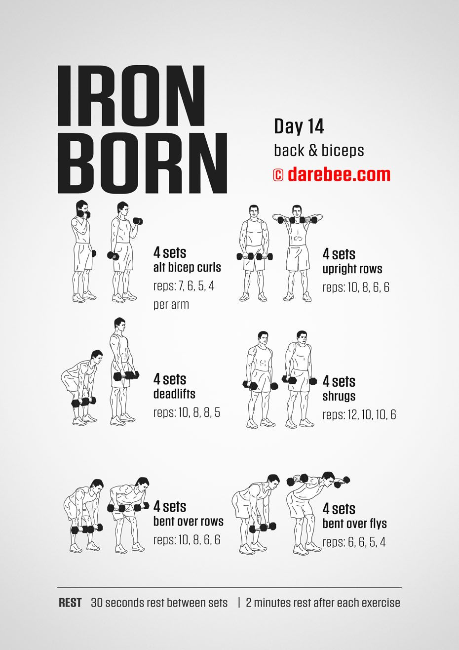 IRONBORN 30 Day Muscle Definition Dumbbell Program by