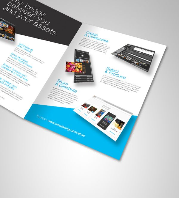 software to design brochures