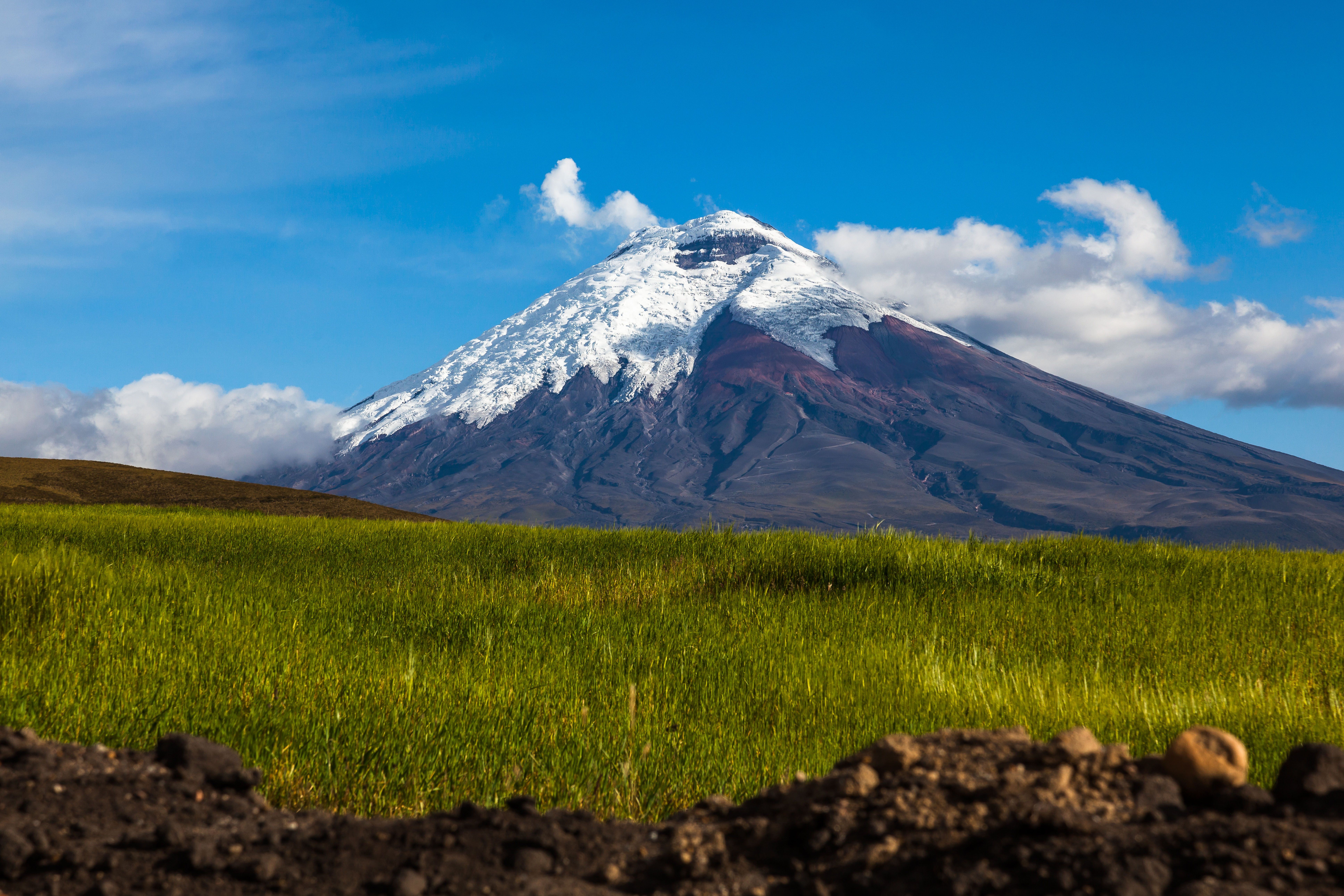 Walk beneath the mighty volcanoes of Ecuador and discover the exotic wildlife of Galapagos on our new two-part adventure... #Ecuador #Galapagos #GalapagosIslands #SouthAmerica #Adventureholiday #walkingholiday #andes