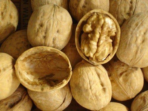 الجوز يكبح السرطان ويقاوم الرباعية القاتلة Food Cancer Peanut