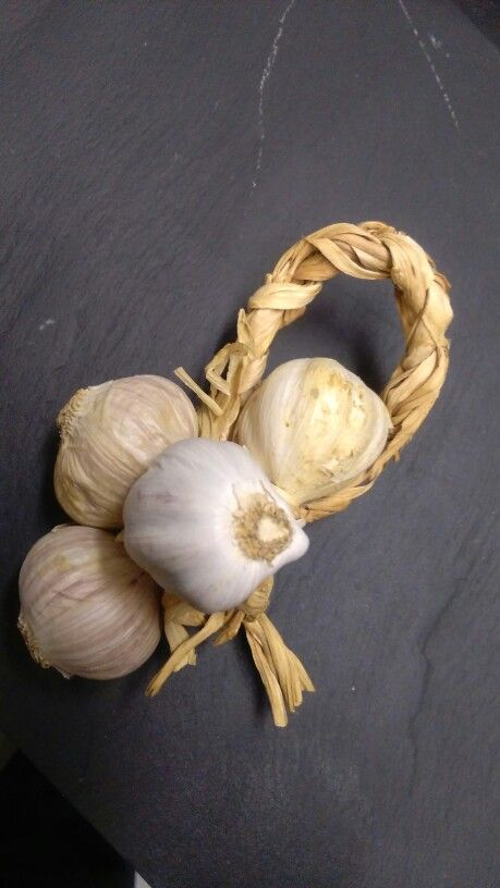 The garlic reed, it is amazing...!! Aglio Rosso di Nubia..!! Only from Italy
