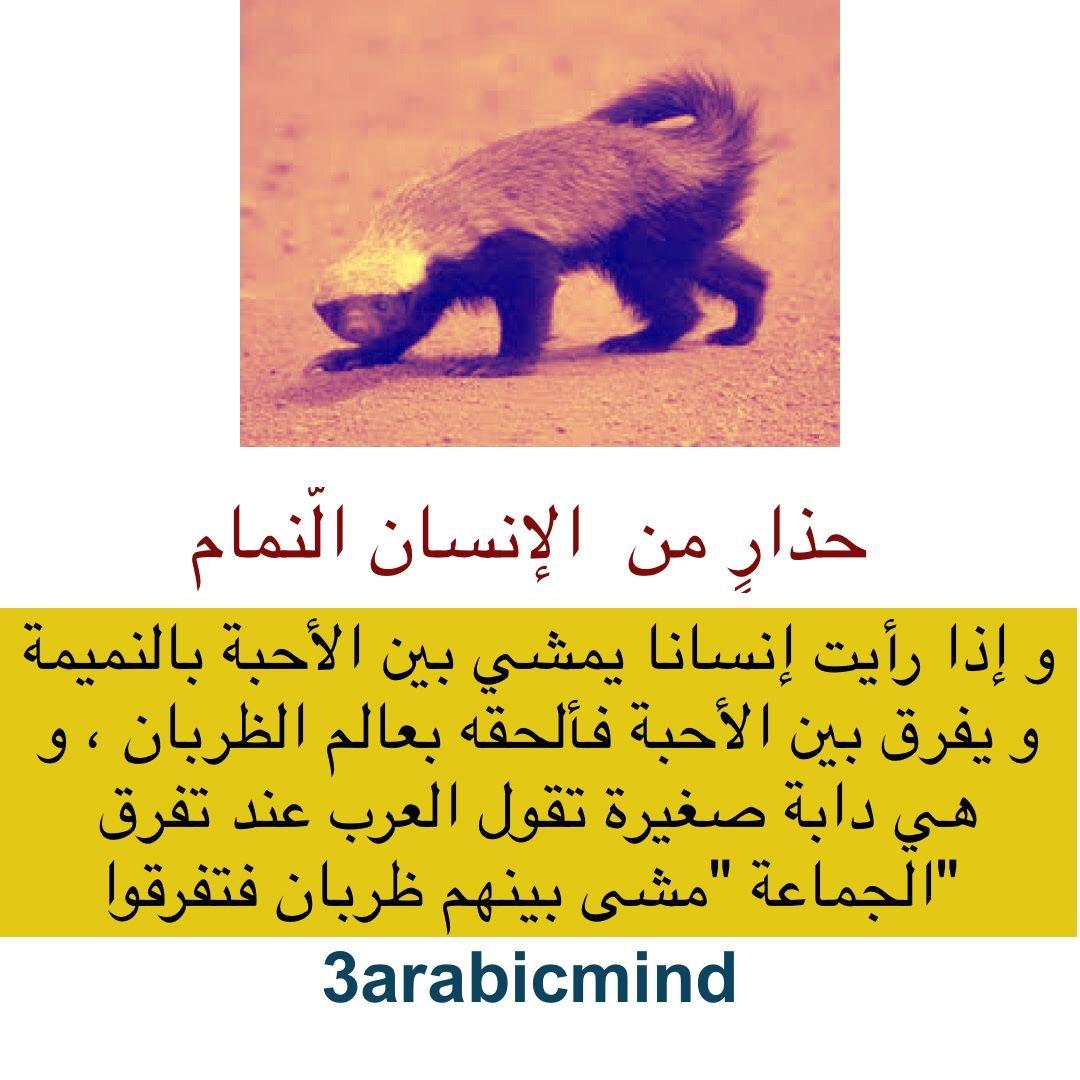 حذار من الانسان النمام Islam Lis