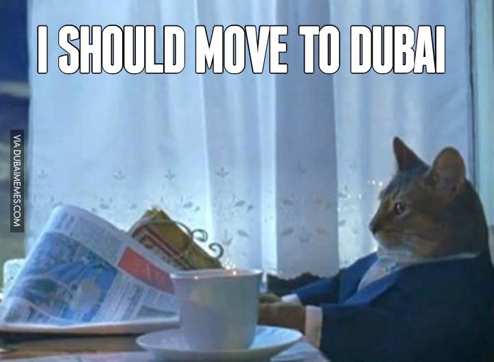 I should move to Dubai #dubai #onlyindubai #dubaiproblems #dxb #dubailife #uae #mydubai #sharjah #abudhabi #alain #dubaiexpat #dubaimemes #dubaimall #myuae