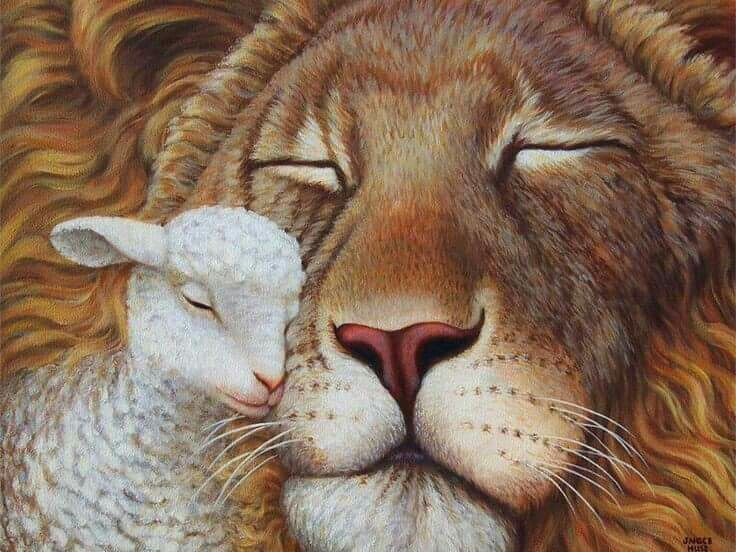 The Lion & The Lamb              Peace