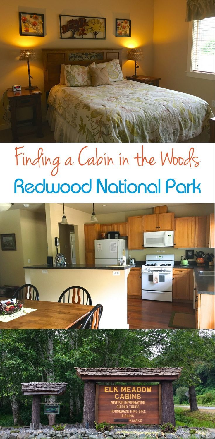 Redwood National And State Parks Discover The Land Of
