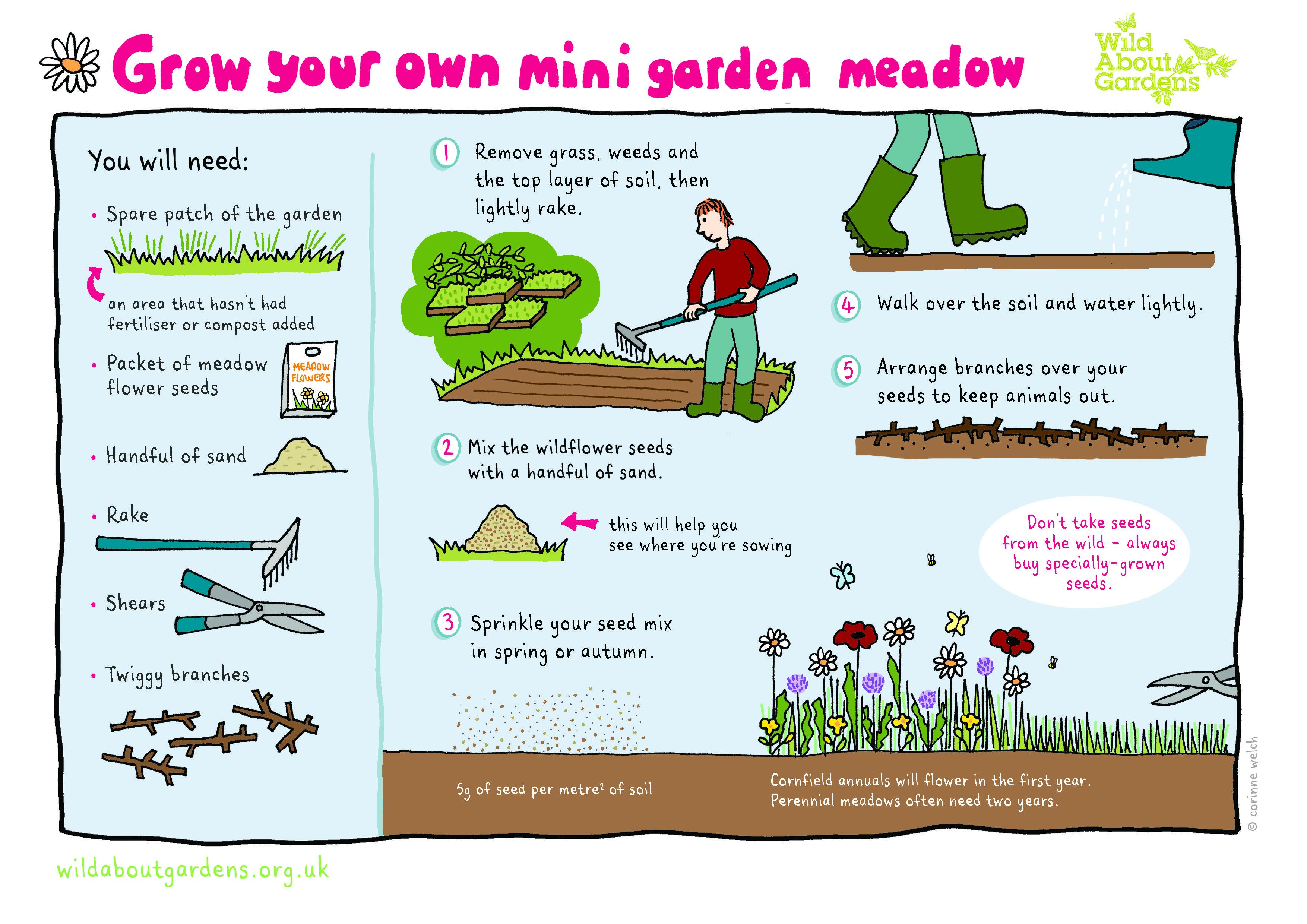 Картинки по запросу How To Create Meadow In Garden Gallery