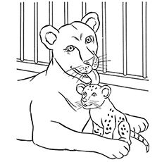 Top 25 Free Printable Zoo Coloring Pages Online Lion Coloring Pages Zoo Coloring Pages Zoo Animal Coloring Pages
