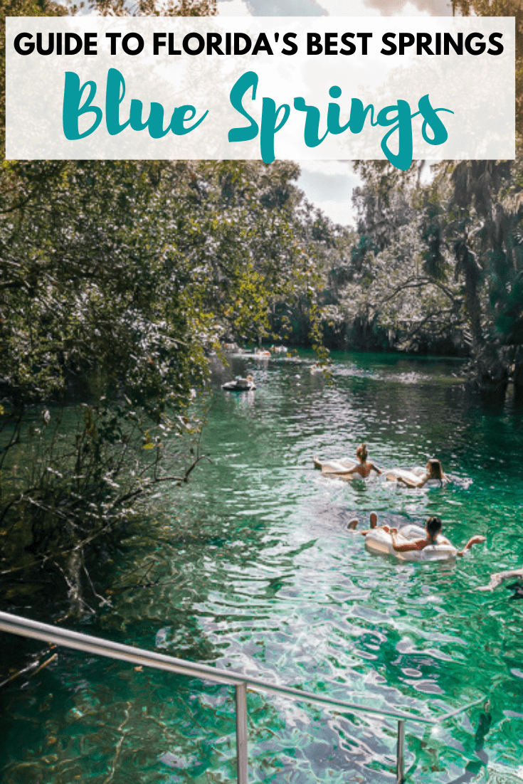 12 Best Natural Springs In Florida Crystal Blue Waters Natural Springs In Florida Florida Springs Spring Nature
