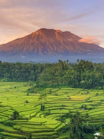 Photographic Print: Indonesia, Bali, Redang, View of Rice Terraces and Gunung Agung Volcano by Michele Falzone : 24x18in