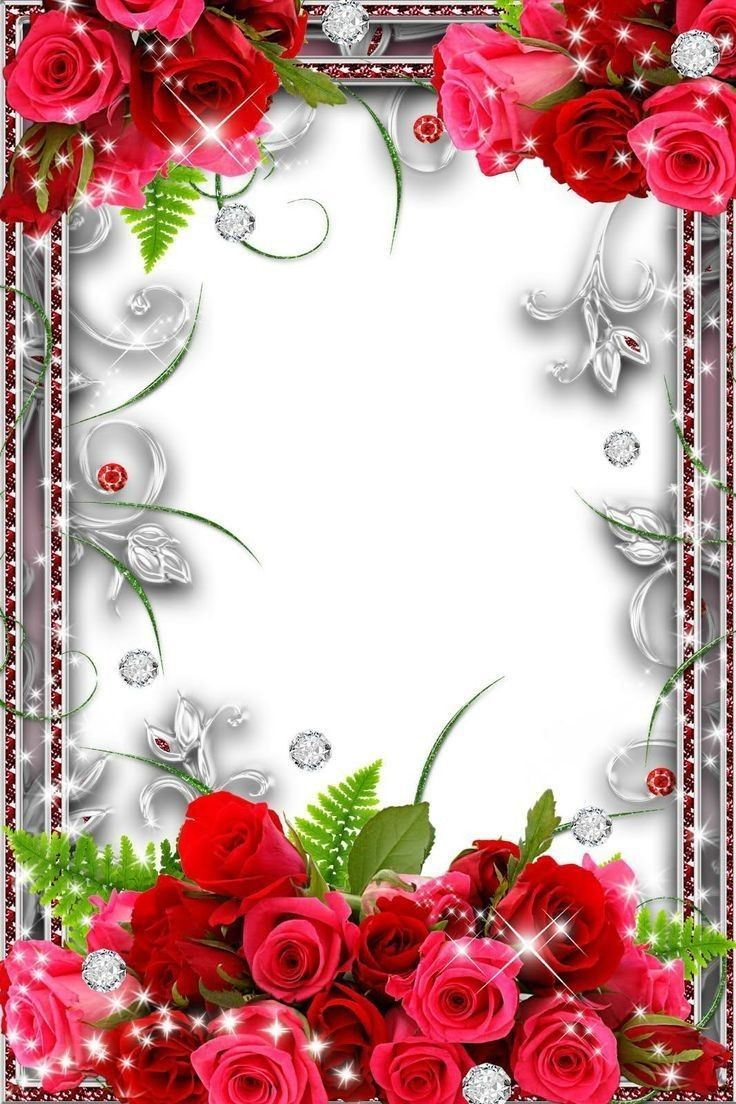 Wallpaper Flower Frame Flower Border Rose Frame