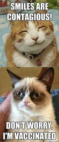 Smiles are contagious...  Grumpy Cat... Don't worry, I'm vaccinated.