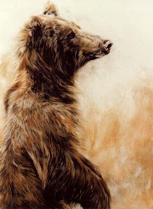 Grizzlie Bear