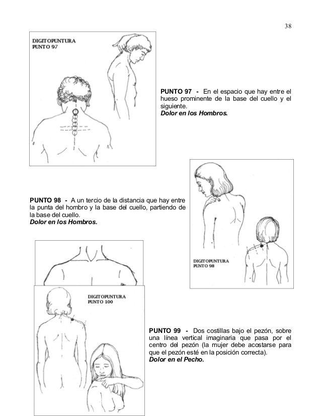 Vistoso Tendón Conjunto Anatomía Del Hombro Ilustración - Anatomía ...