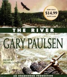 2nd Book In Hatchet Series Gary Paulsen Peter Coyote Audio Books
