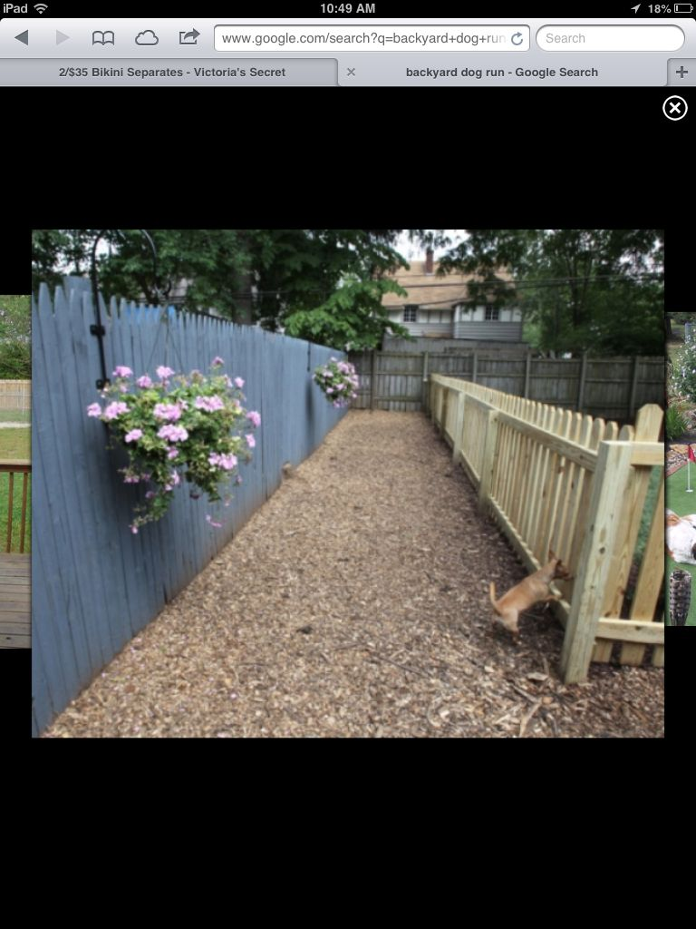Dog Run. Love That Its Wood Chipped. Idea For The Ground Cover.