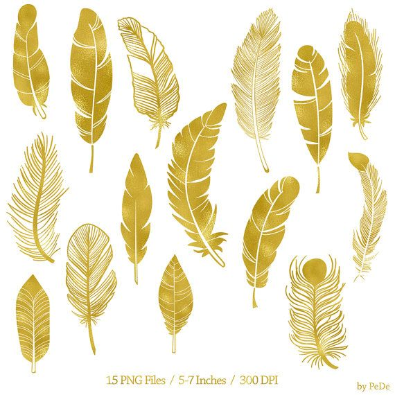 Buy 3 For 6 Usd Gold Feather Clip Art Gold Foil Feathers Clipart Gold Foil Clipart Instant Download Feather Clip Art Feather Drawing Feather Illustration