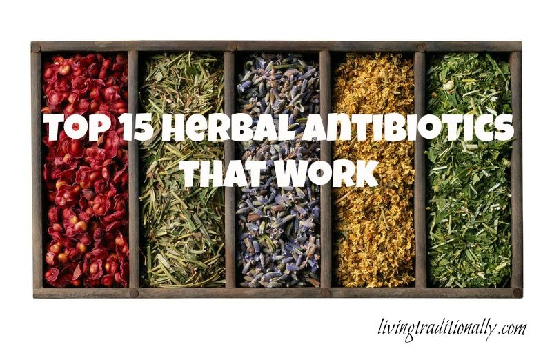 Pin by MightyNest on Natural Remedies Herbs for health