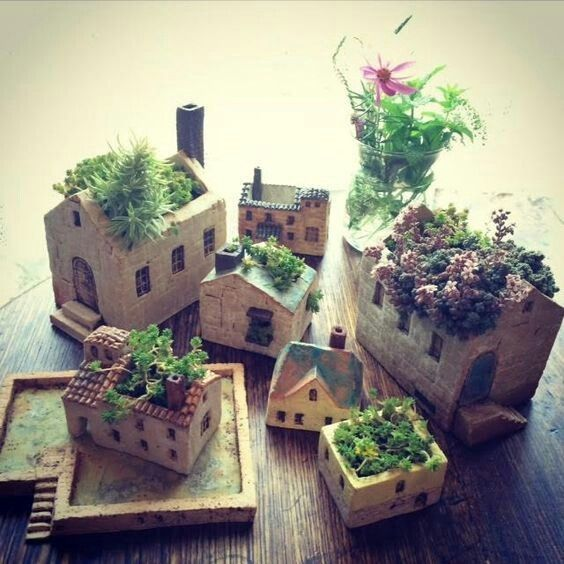 explore house gardens house plants and more