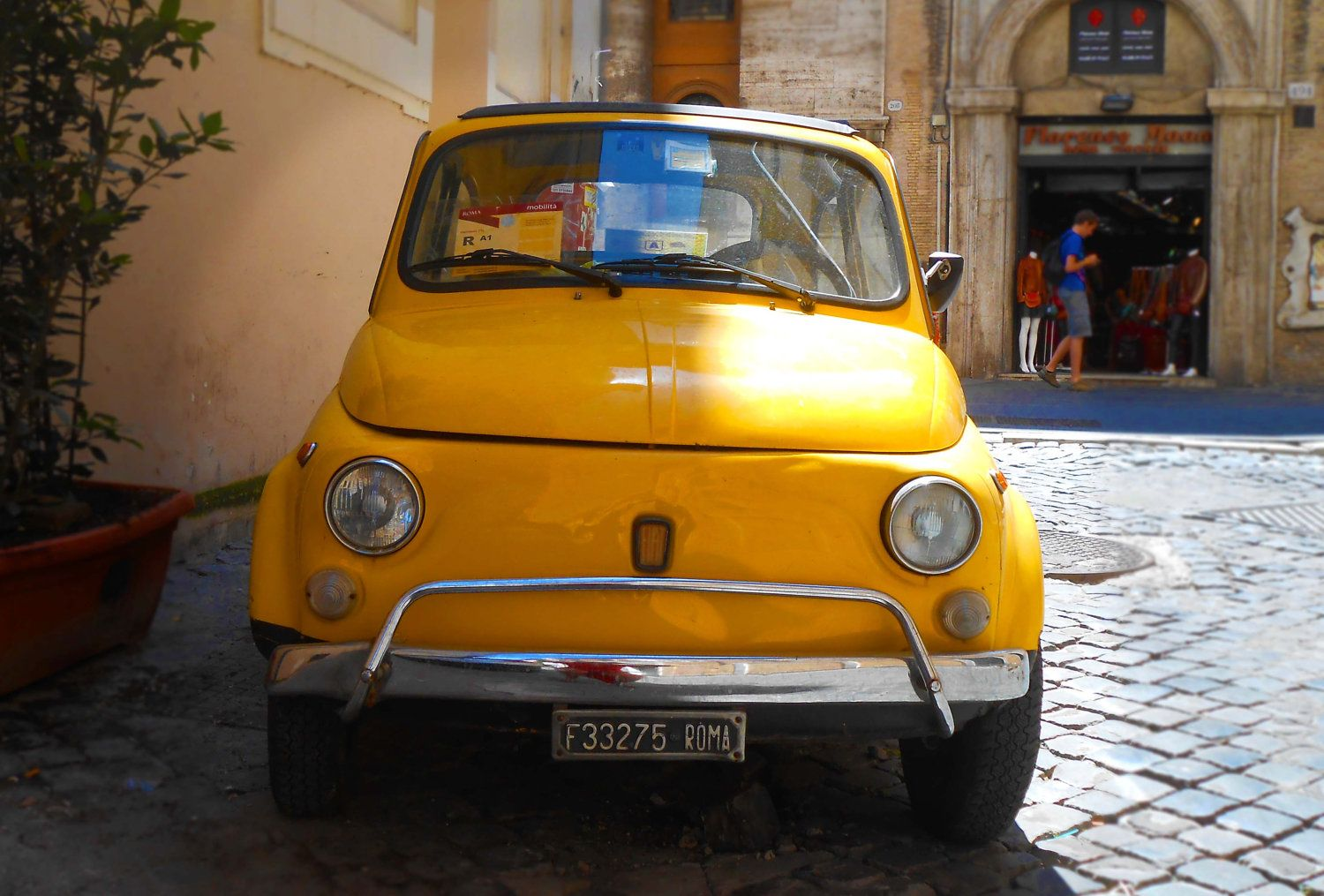 fiat 500 basket rack bing images fiat 500 pinterest fiat 500 fiat and image search