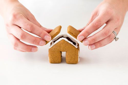 Not Martha Tiny Gingerbread House Decorations Cookie Cutter