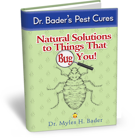 Natural solutions to things that bug you get rid of ants spiders natural solutions to things that bug you get rid of ants spiders roaches ccuart Choice Image