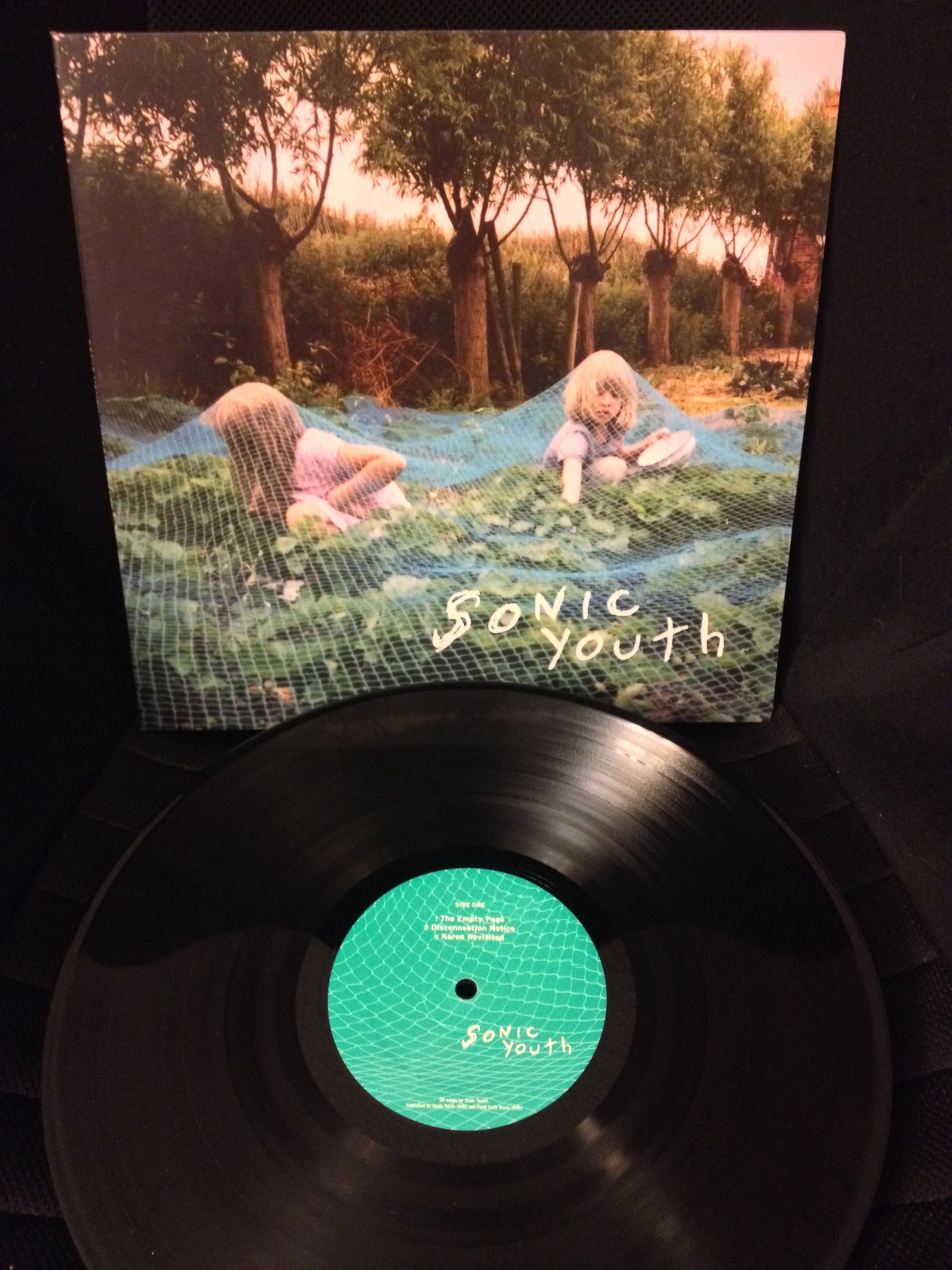 Sonic Youth Murray Street Rock Indy Vinyl Records