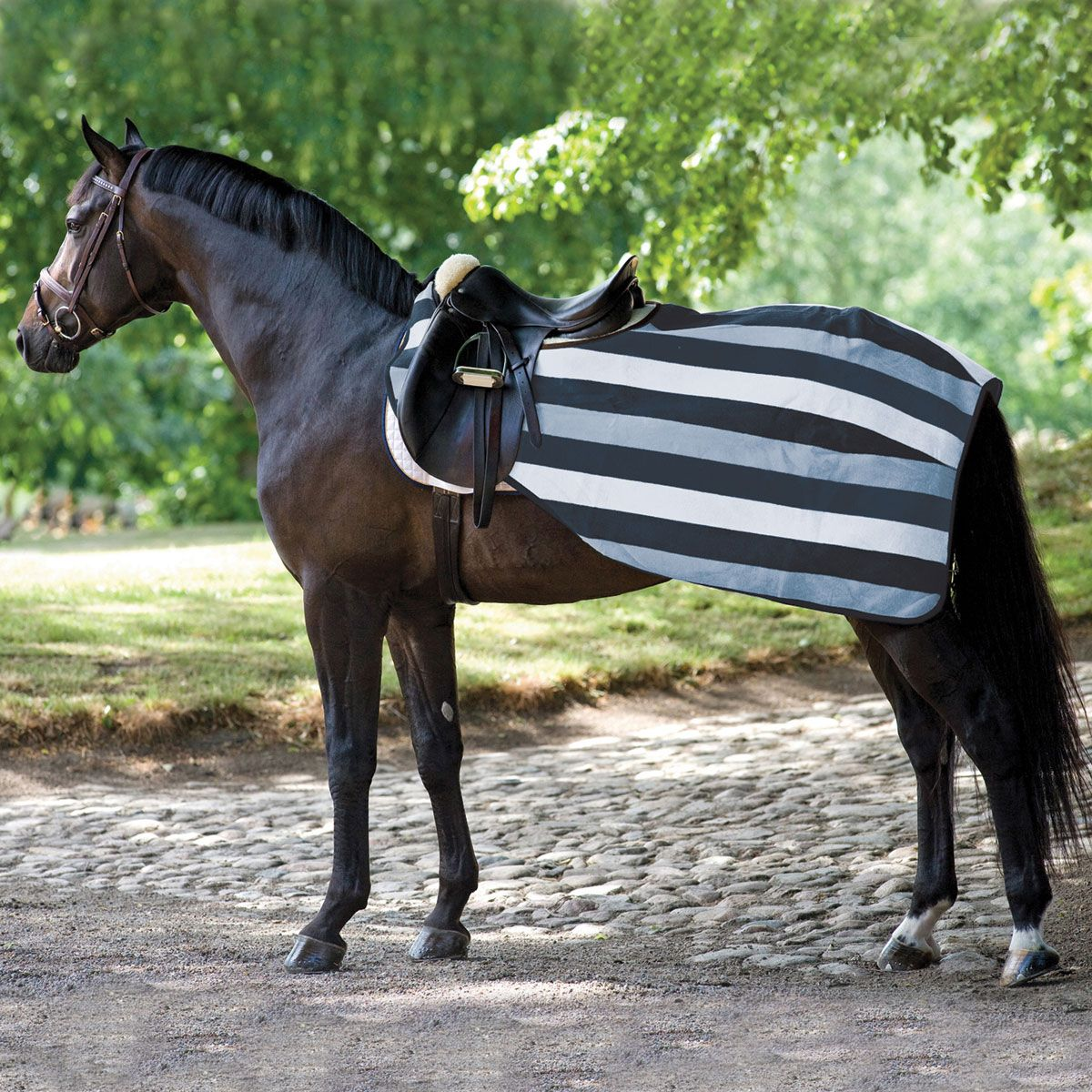 Rambo Fleece Competition Sheet In 2020 Horses Newmarket Horse Blankets