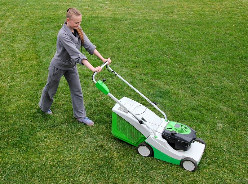 Different Types Of Lawn Mowers Lawnmowers Lawn Mower Push Lawn Mower Mini Workout