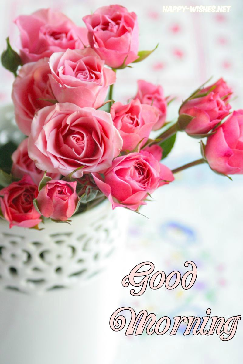 Good Morning Wishes With Lovely Rose Picture Good