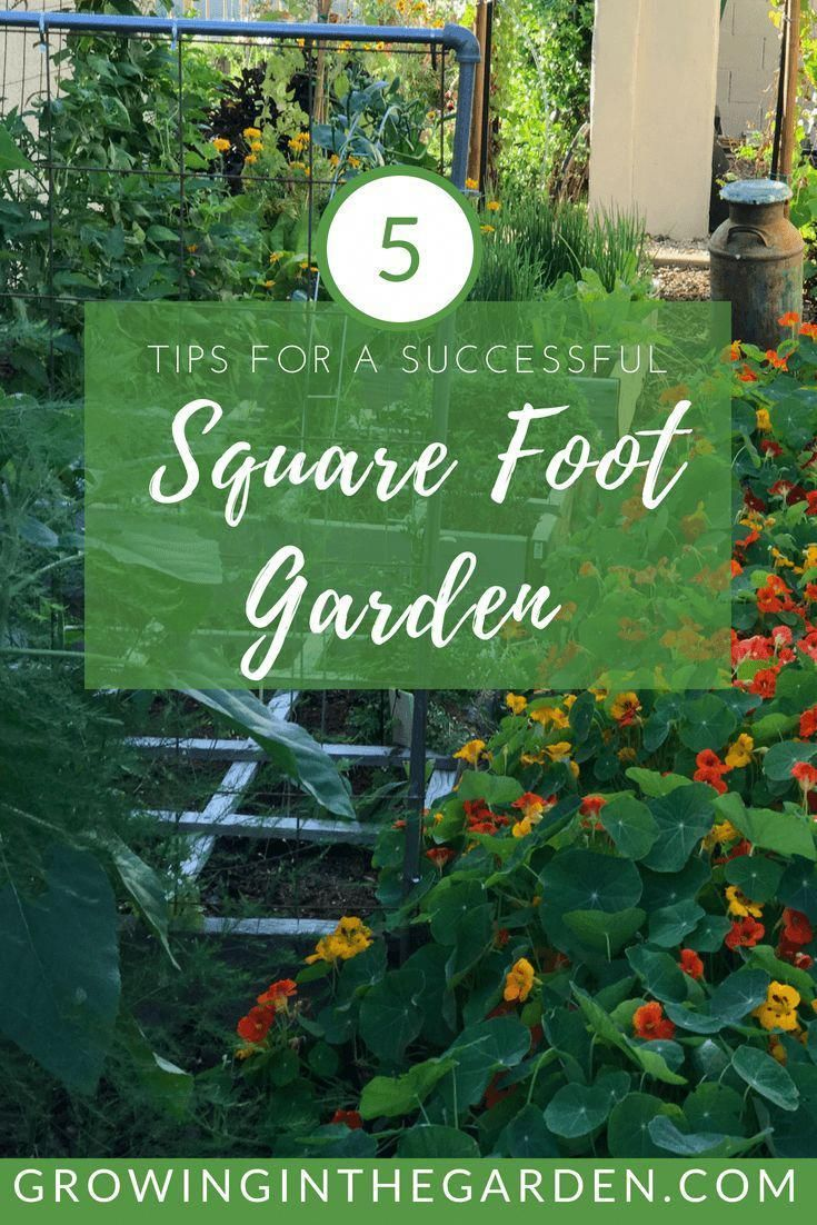 "Ten years ago I read ""All New Square Foot Gardening"", by Mel Bartholomew and started my first garden. I followed Mel's advice, and ten years later I still believe square-foot gardening is the best way to get started and have a thriving home garden. Here are 5 tips for a successful square foot garden. years ago I read ""All New Square Foot Gardening"", by Mel Bartholomew and started my first garden. I followed Mel's advice, and ten years later I still believe square-foot gardening is the best way to get started and have a thriving home garden. Here are 5 tips for a successful square foot garden."