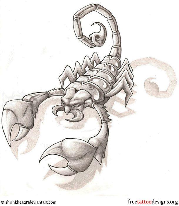 scorpion tattoo design scorpion tattoos tattoo designs zodiac tattoos body art tattoos