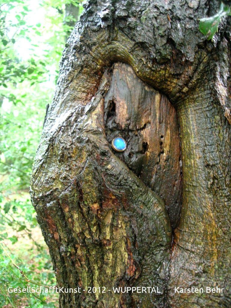 Die Schönheit der Natur zu entdecken, bedingt, sehr genau hinzusehen!