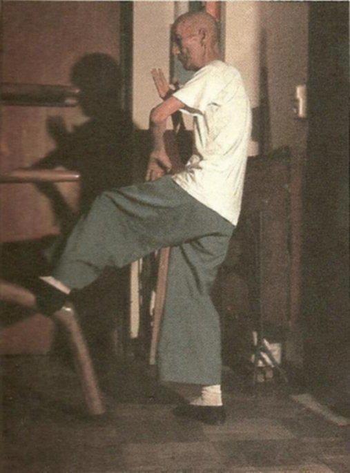 Resultado de imagem para Ip Man Wooden Man