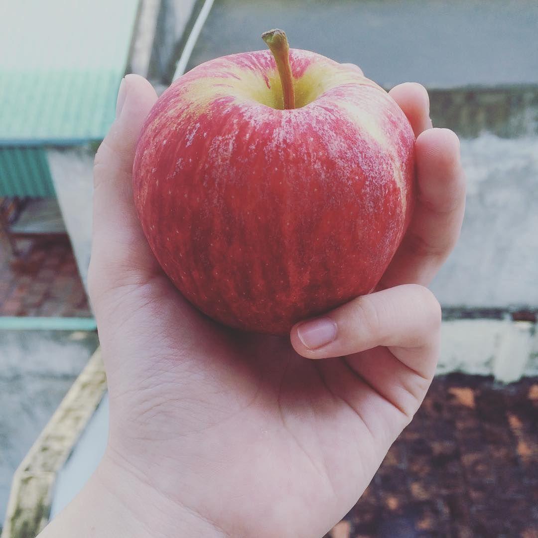 Đỏ đỏ #apple #red #pink #yellow #lovely #pie #food #fruit #yummy #instagram #followforfollow #followme