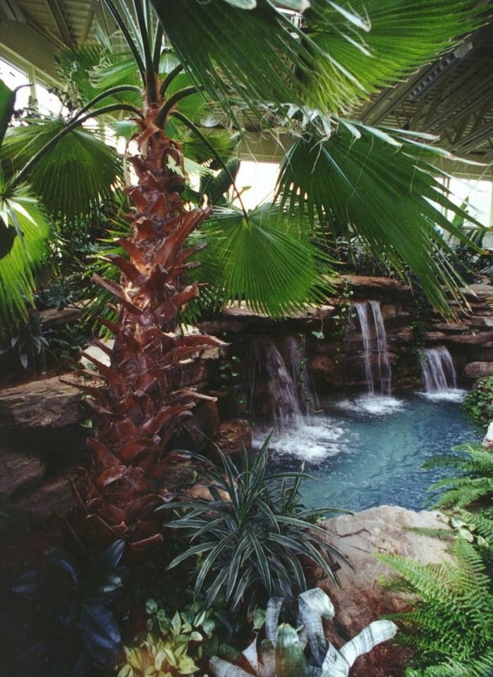 Indoor water feature garden pond in orange county ny for Indoor garden pool
