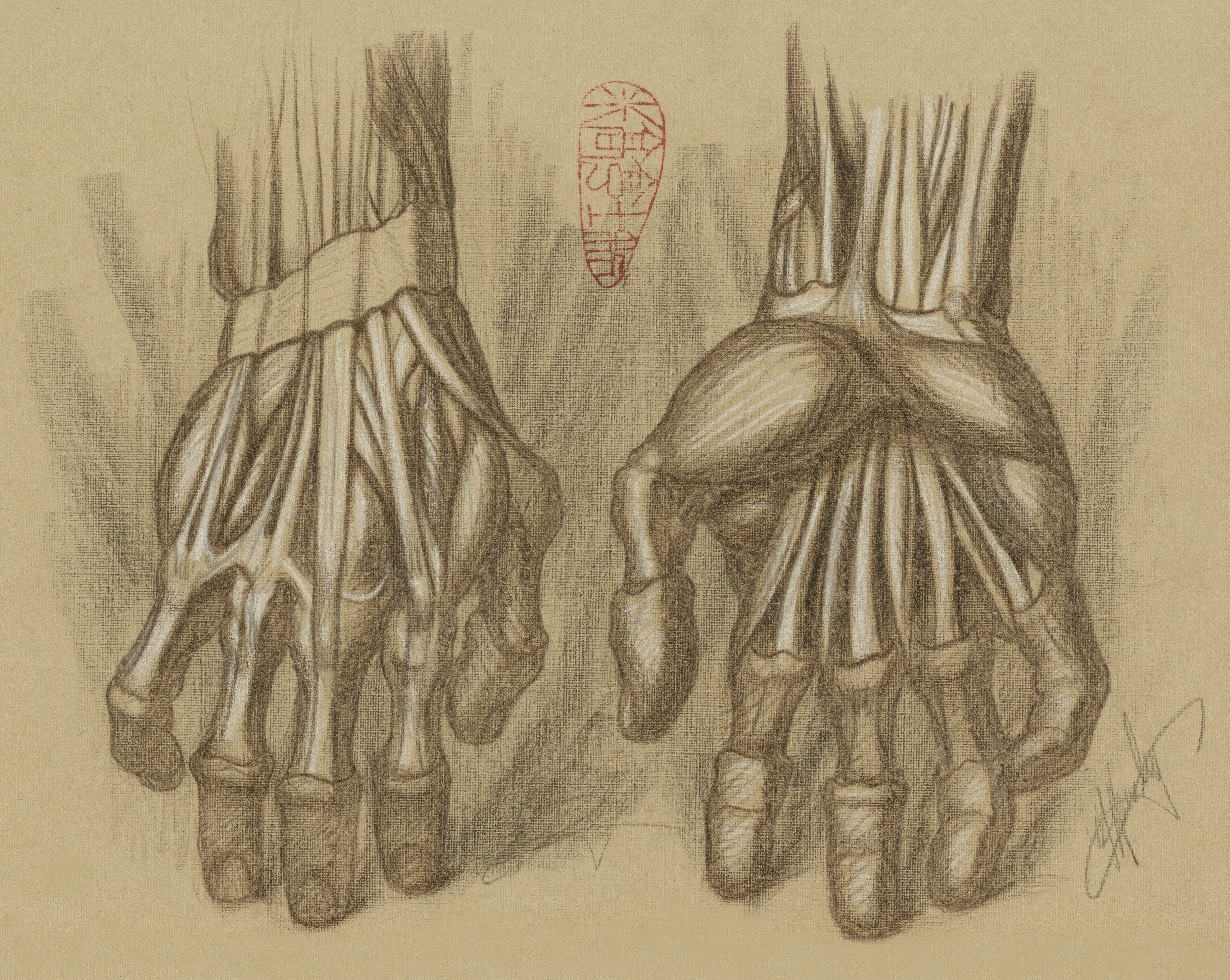 Anatomical Hand Study by Michael Hensley | Anatomy Drawings, Michael ...