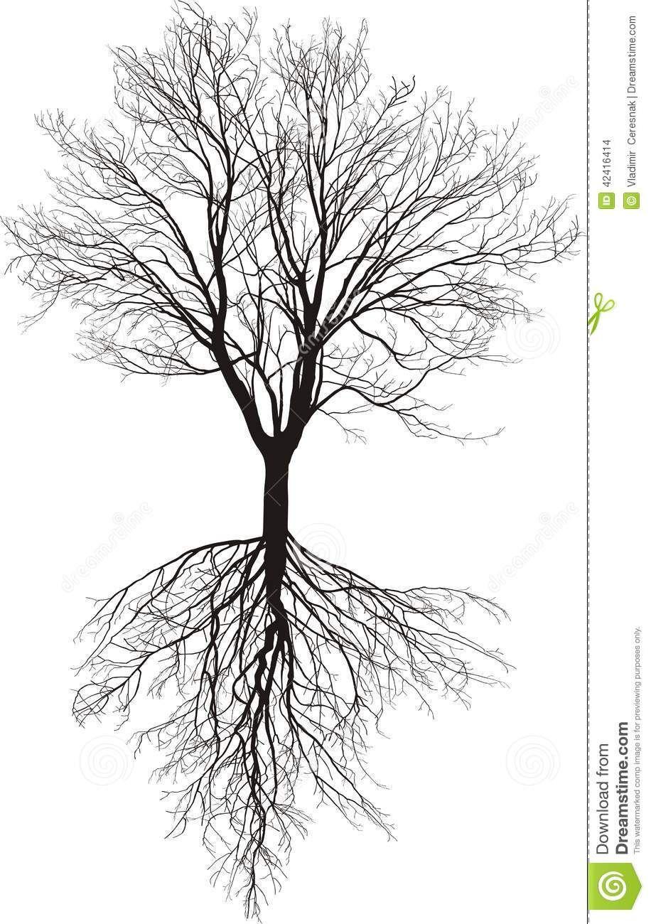 Resultado De Imagen Para Raices Para Photoshop Photoshop Tree