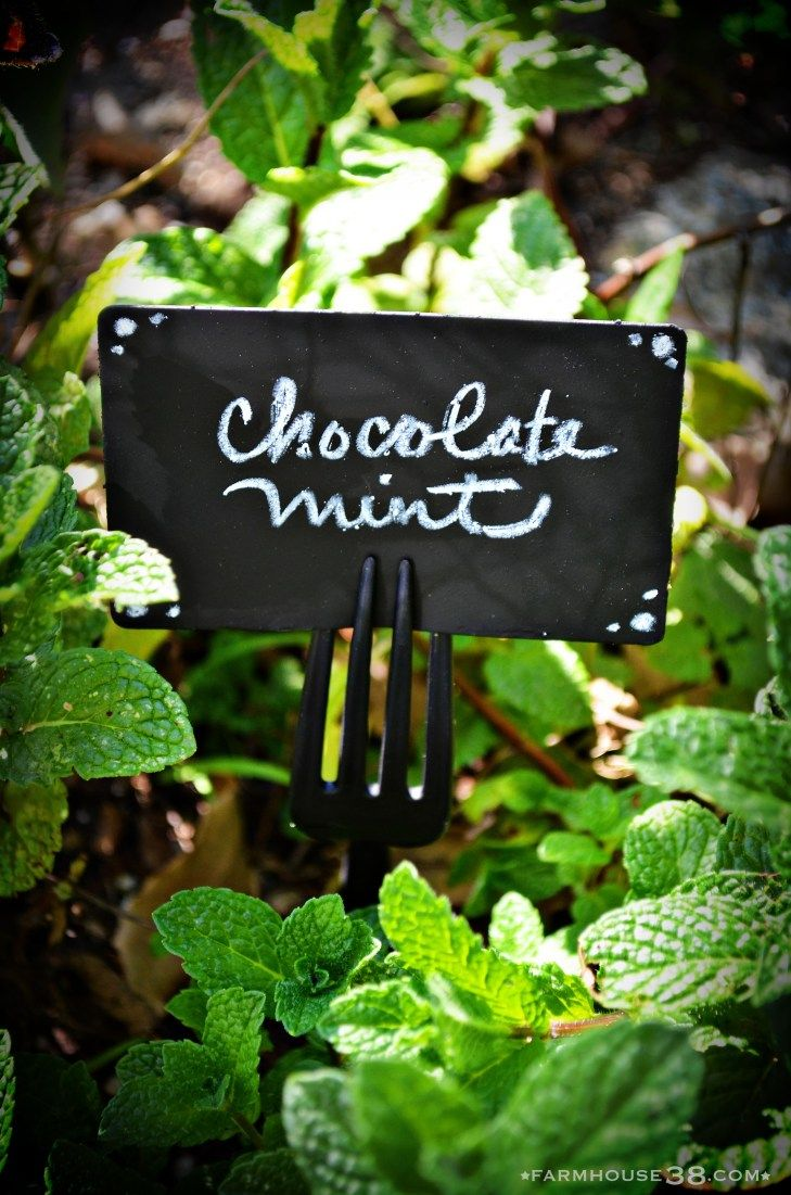 Chalkboard plant markers from old gift cards plant