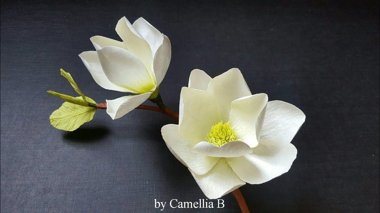 Diy Paper White Magnolia Flower From Crepe Paper Paper Mulan