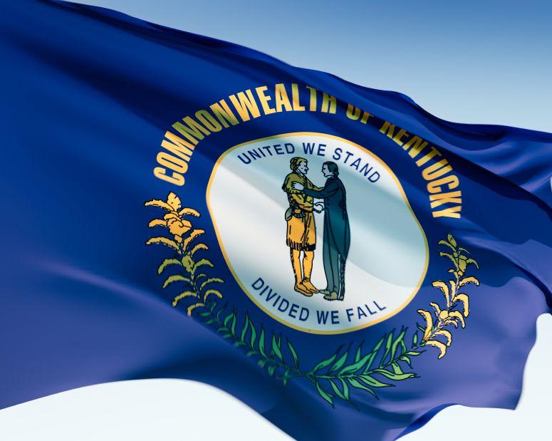 Kentucky The Blue Grass State Flag Next Generation Science Standards Kentucky State Flag Kentucky