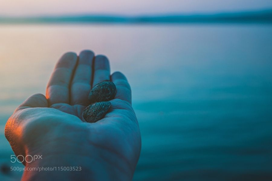 shells by Danuberiverchild