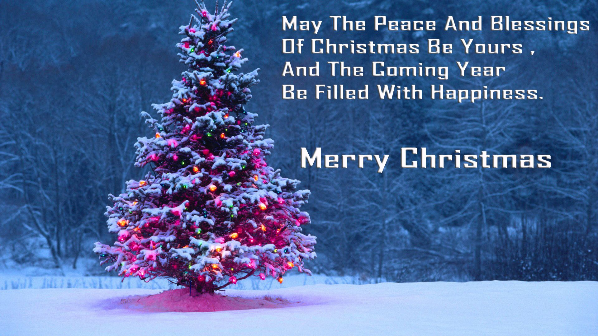 Christmas Tree 1080p Widescreen Desktop Wallpaper Hd Wallpapers Merry Christmas Wishes Peace On Earth Christmas